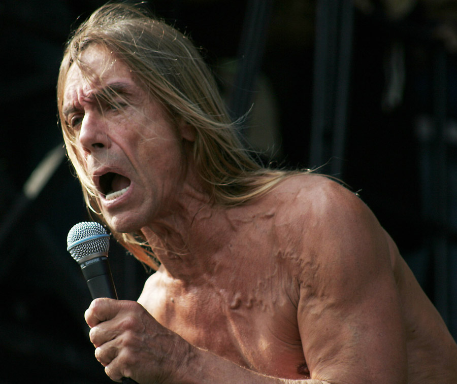 Iggy Pop, August 5, 2007, at Lollapalooza