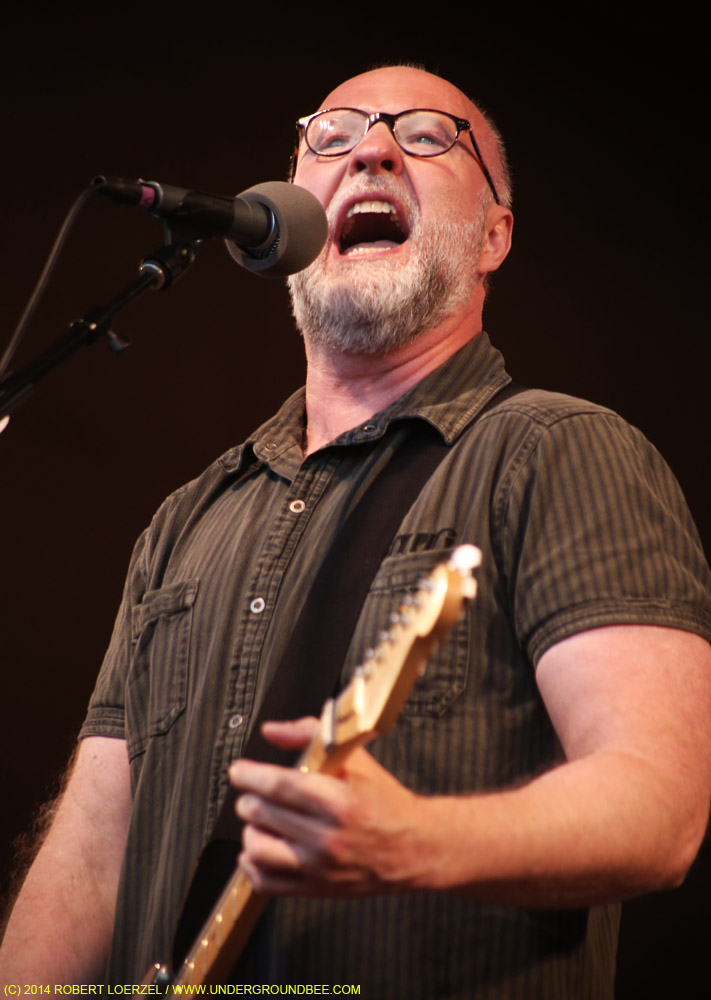 Bob Mould, June 23, 2014, at Millennium Park