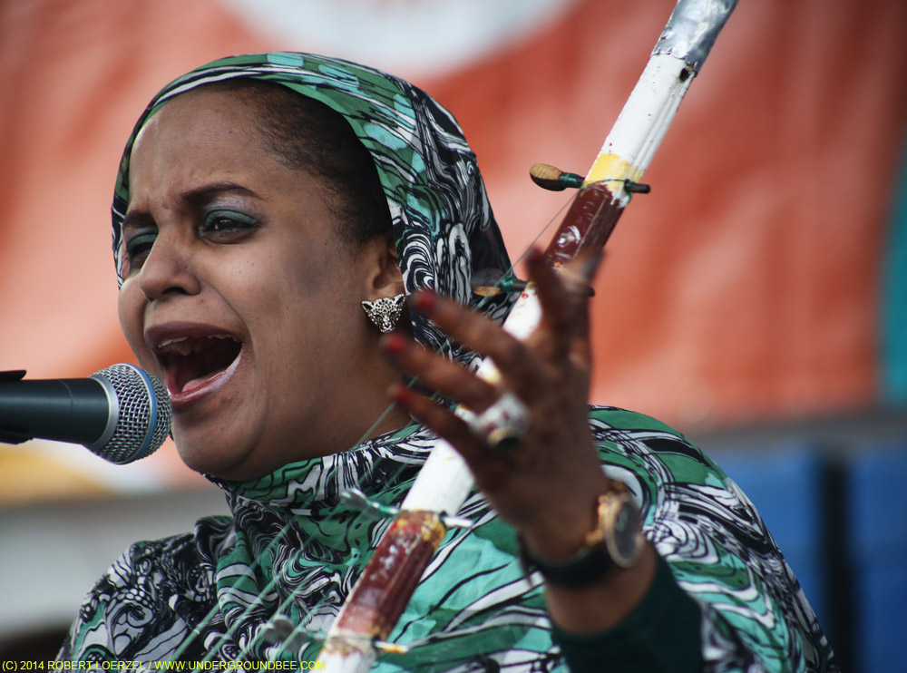 Noura Mint Seymali, July 11, 2014, at the Square Roots Fest